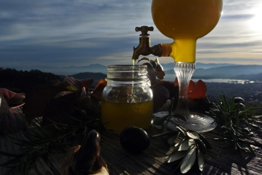 Myrolion Greek Organic Extra Virgin High Phenolic Health Claim Olive Oil EVOO