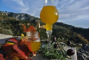 Elenolide discovered in Extra Virgin Olive Oil