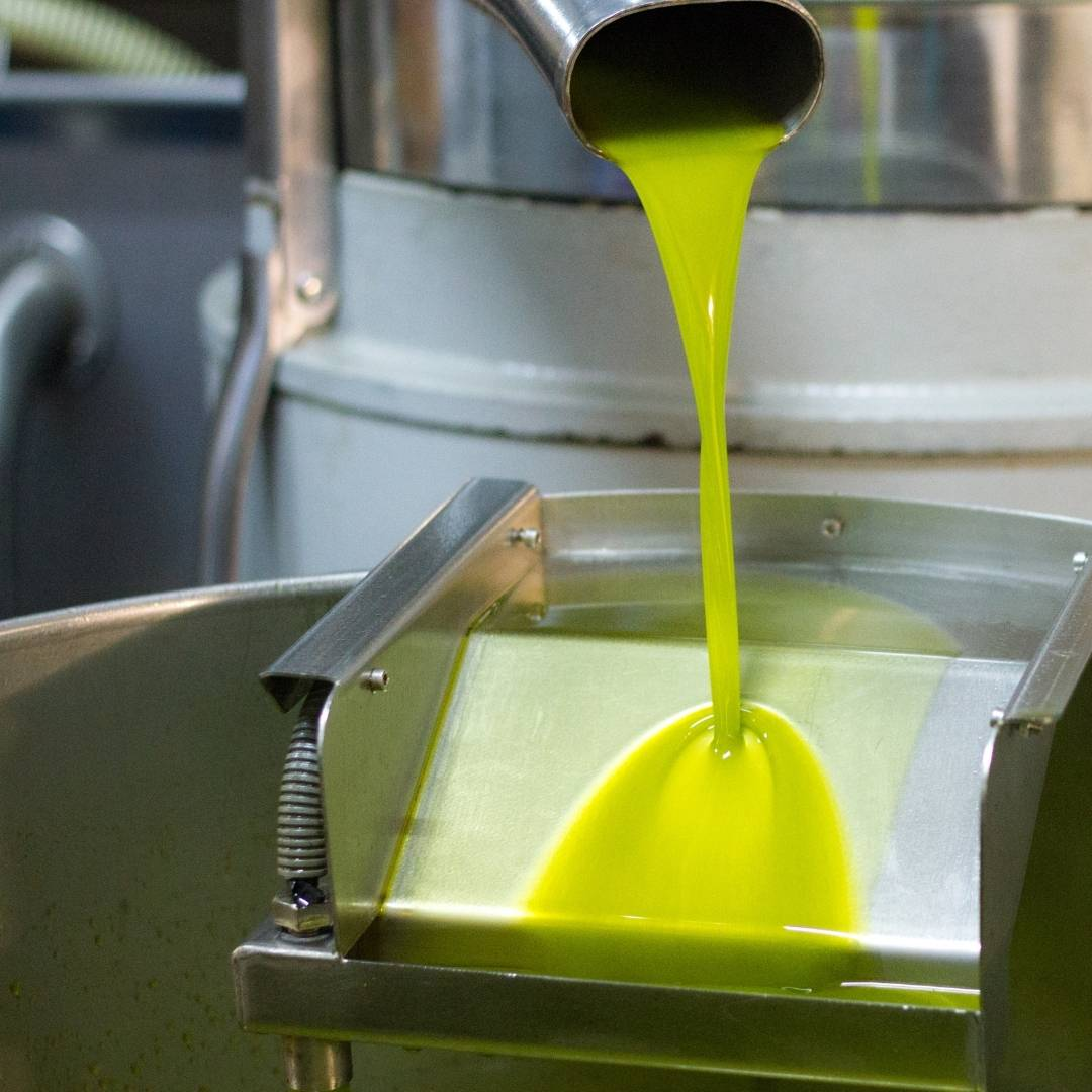 Best Time to Buy Fresh Olive Oil